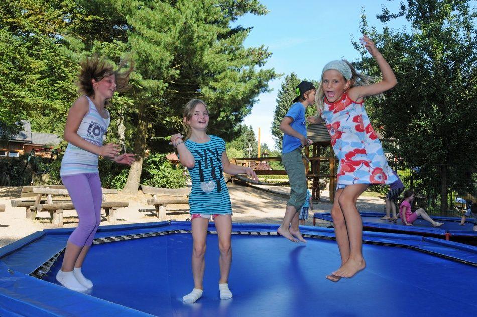 kinder auf dem trampolin auf dem abenteuerspielplatz im wildpark schwarze berge wildpark. Black Bedroom Furniture Sets. Home Design Ideas