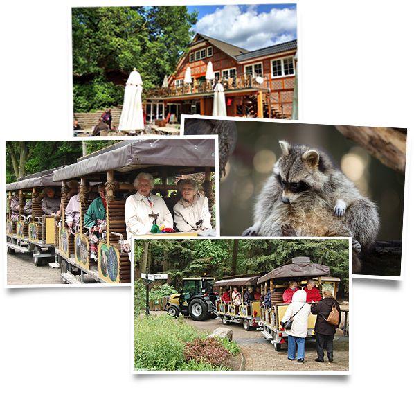 Barrierefreie Attraktionen im Wildpark Schwarze Berge mit Wildparkbahn, Waschbärenfütterung, Kaffee und Kuchen und tierischen Erlebnistouren