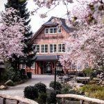 Eingangsgebäude mit Kirschblüten Bäumen und Zuwegung zum Wildpark Schwarze Berge
