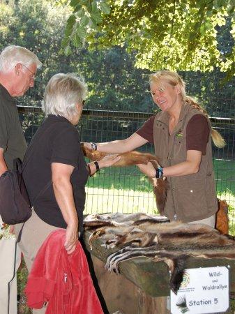 Familien Wild und Waldrallye im Wildpark Schwarze Berge