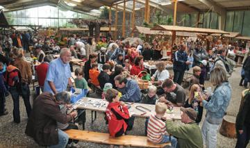 herbstmarkt-der-kuenstler-im-wildpark-schwarze-berge-3-von-4