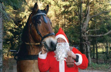 mit-dem-weihnachtsmann-auf-futtertour_wsb