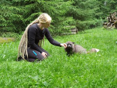 Mogli und Hana im WIldpark Schwarze Berge