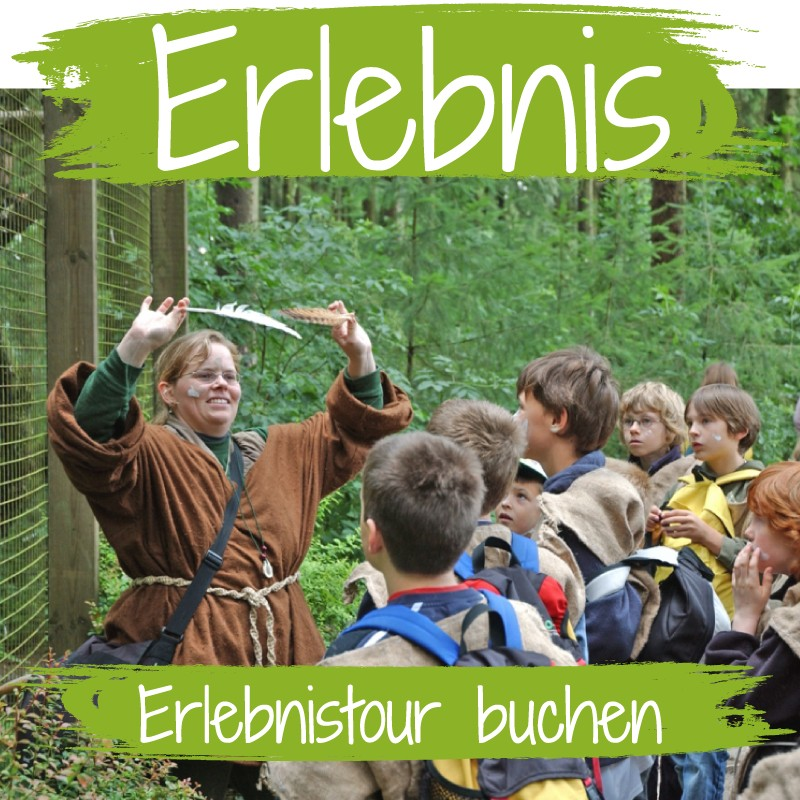 Kinder staunen bei spannenden Erlebnistouren im Wildpark Schwarze Berge