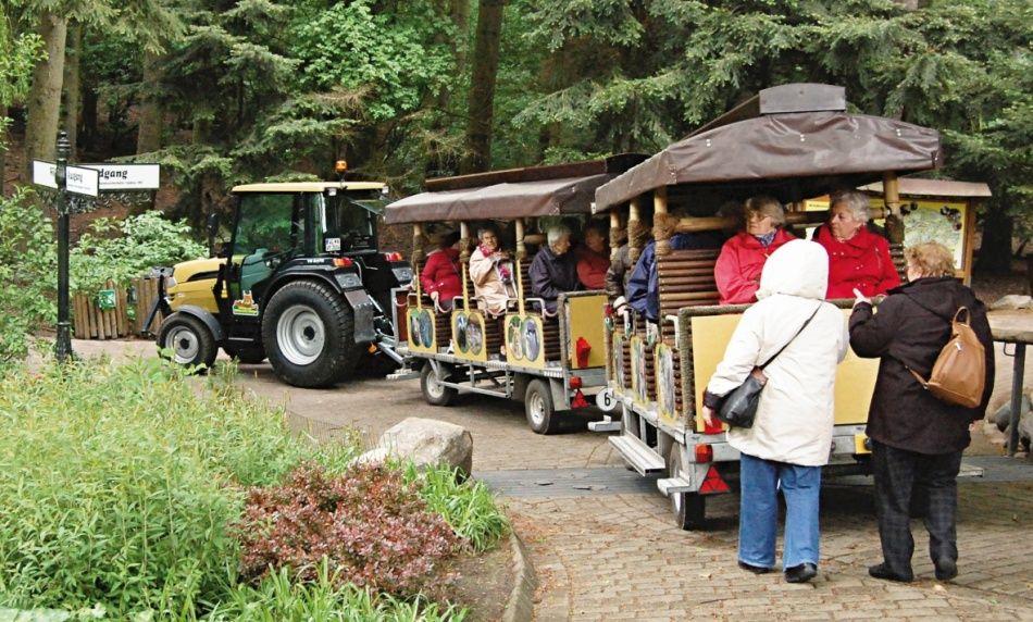 Besucher fahren mit der barriefreien Wildpark-Bahn im Wildpark Schwarze Berge