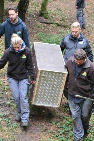 Abschied Wolfswelpen Transport im Wildpark Schwarze Berge-7 (002)