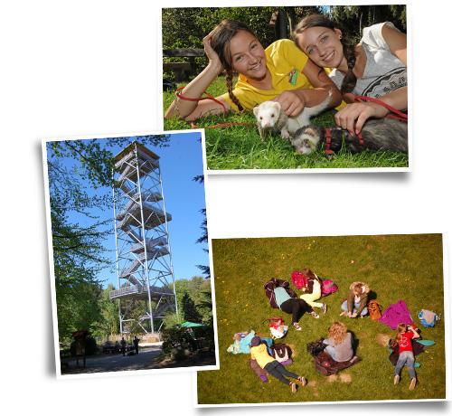 Collage Picknick am Elbblickturm im Wildpark Schwarze Berge, Picknick, Elbblickturm, Frettchen, Mädchen, Sommer, draußen, blauber Himmel