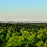 Panoramaaussicht Elbblickturm Wildpark Schwarze Berge-1