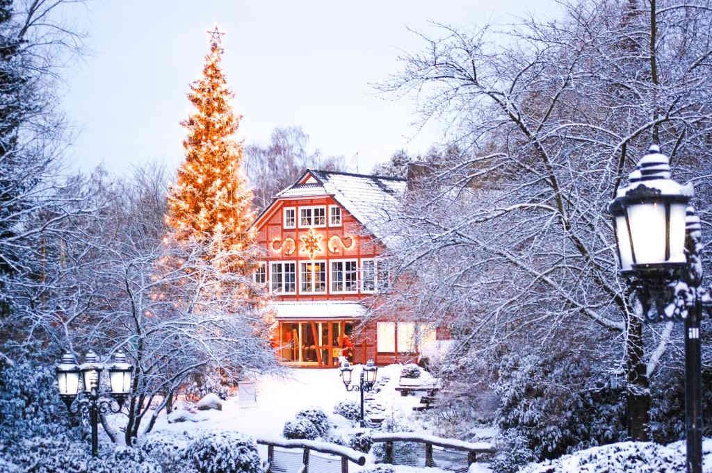 eingang-winter-weihnachten-wildpark-schwarze-berge