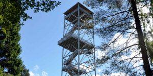 Elbblickturm im Wildpark