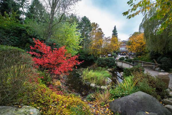 Eingang im Herbst