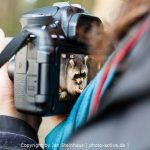 Fotokurs mit photo-active