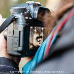 Fotokurs mit photo-active
