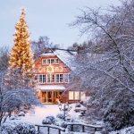 Wildpark Schwarze Berge_ Eingang im Schnee