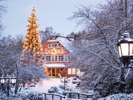 Wildpark Schwarze Berge Eingang im Schnee mit weihnachtlicher Beleuchtung