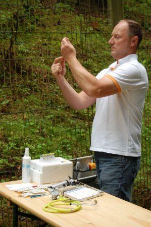 Tierarzt am Wolfsgehege im Wildpark Schwarze Berge