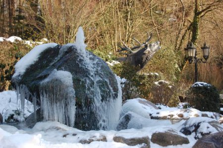 wildpark-schwarze-berge-brunnen-gefroren